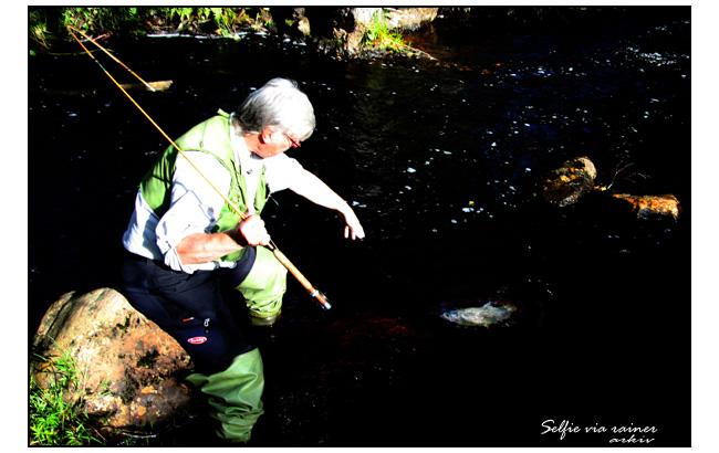 dryflyfishing