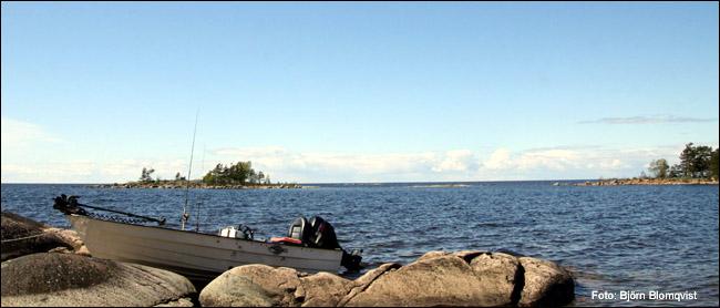 kustfiske havsfiske gädda vänern 2015