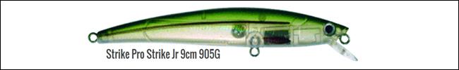905G laxvobbler 11.22 kg vättern 20 okt 2015