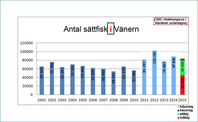 sättfisk 2015 vänern lax öring sävenfors fiskodling levererade allt utom ettårig