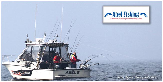 outdoor-Abel-Salmon-Fishing-Baltic-Sea-Photo-Bjorn-Blomqvist