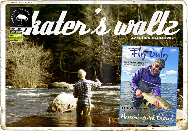 FLY ONLY skaters walts skaterfiske hasarfiske torrfluga öring tidan trout and salmon outdoor björn blomqvist