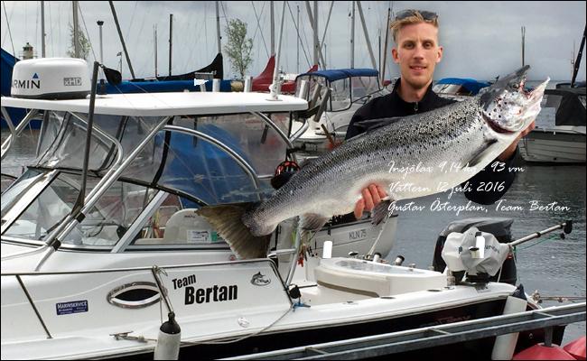 team bertan vättern trolling gustav österplan lax 9,14 kg 93 cm