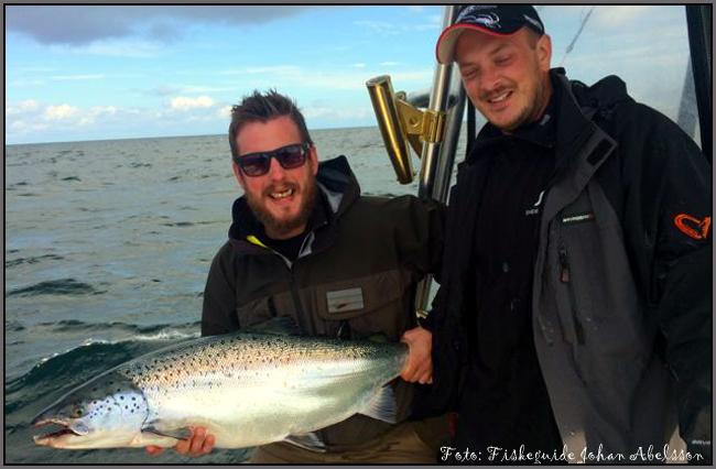 fiskeguide johan abelsson abelfishing.com trolling lax östersjölax simrishamn