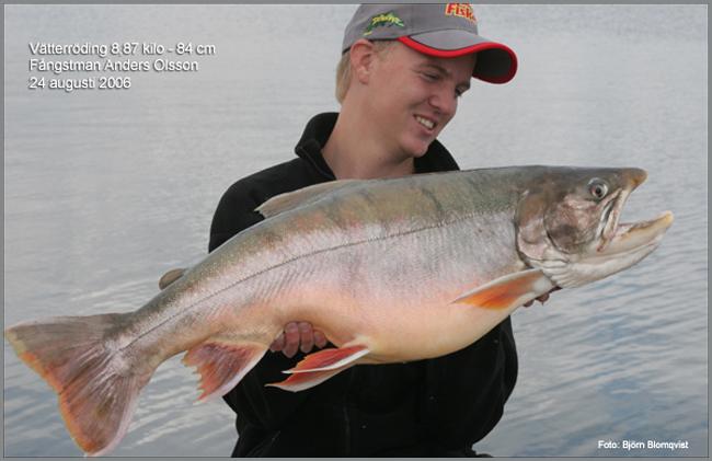 24-aug-2006-rekordroding-vattern-roding-8_87-kg-outdoor_se-bjorn-blomqvist