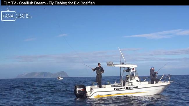 fly-tv-kanalgratis-se-summer-2016-rost-norway-lofoten-coalfish