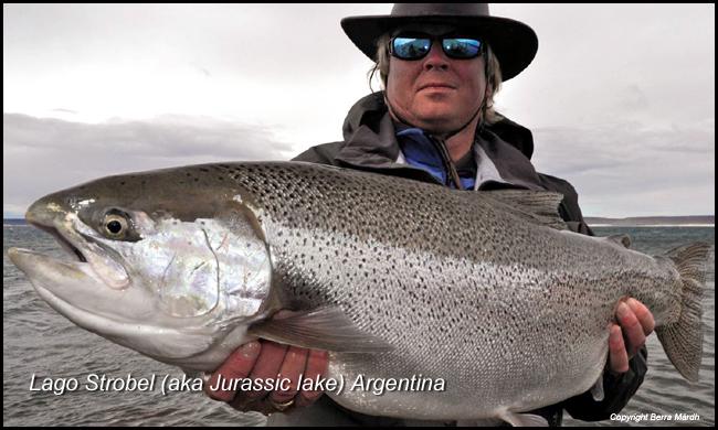 jurrasic-lake-labo-strobel-argentina-rainbow-trout-berra-mardh-flyfishing