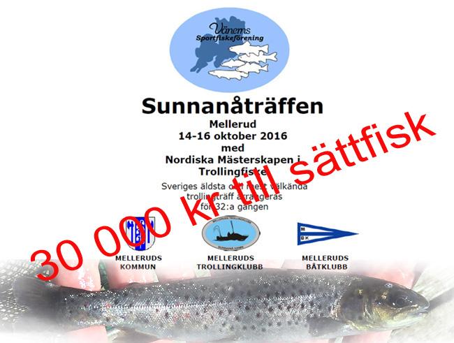 smolt-sattfisk-oring-lax-gullspangsorin-gullspangslax-sunnanatraffen-2016
