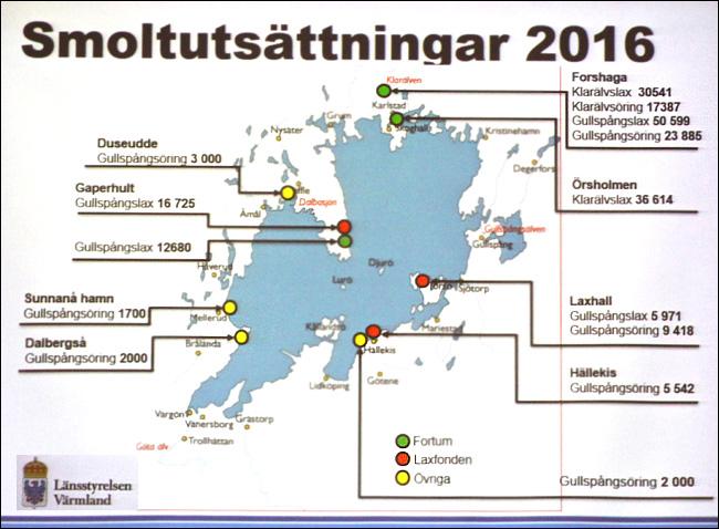 vanerdagen-2016-smoltutsattningar-vanern-lansstyrelsen-varmland-jonas-andersson-gullspangslax-gullspangsoring-klaralvslax-klaralvsoring
