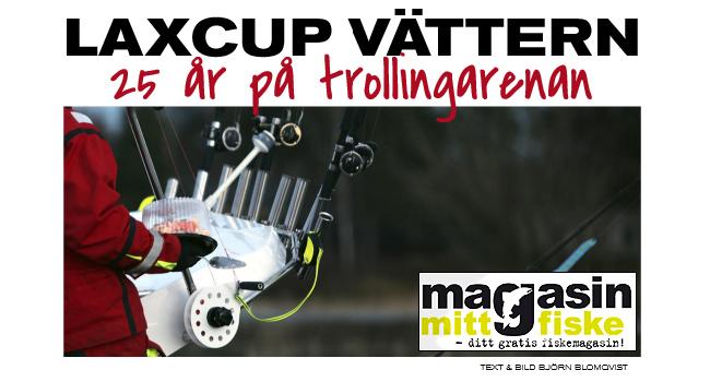 1-laxcup-vattern-25-ar-trollingarenan-2016-trollingfiske-lax-laxtrolling-bjorn-blomqvist