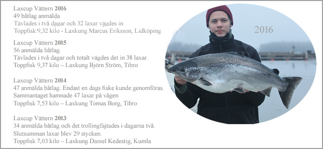 statistik-laxcup-vattern-2013-2014-2014-2015