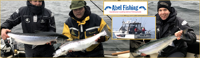 abelsson abelfishing.com laxtrolling laxfiske simrishamn