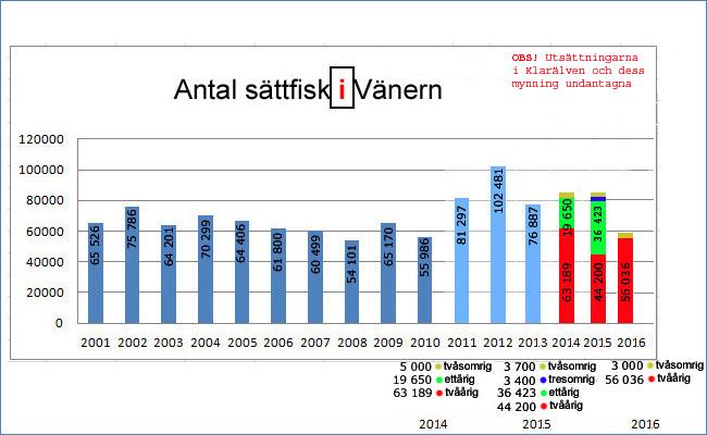 utsättning-av-lax-öring-vänern-2016-sättfisk-smolt-trollingfiske-laxfond-vänern-fortum-sävenfors-fiskodling-em-lax