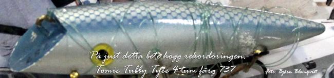 originalbetet som rekordöringen högg på tomic tubby tyee 4 tum 737 vänern 14.32 kg 20 april 2002