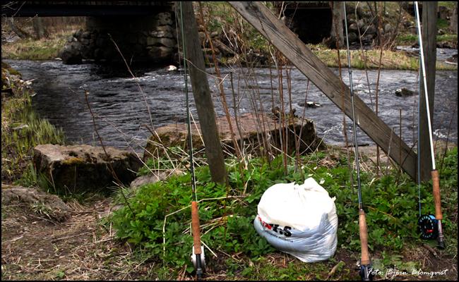 03 Baltak strömfiske Tidan april 2017 Bälteberga regnbåge öring put and take outdoor björn blomqvist