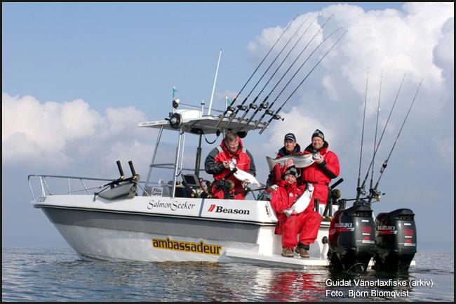 laxtrolling vänern laxfiske lax öring trollingfiske trollingbåt outdoor björn blomqvist