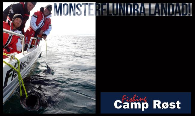 215 cm hälleflundra kveite röst røst fishing camp röst 25 maj 2017