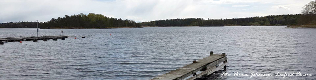 Gullspånglax smolt Upperud 8000 st 9 maj foto Thomas Johansson Laxfond Vänern