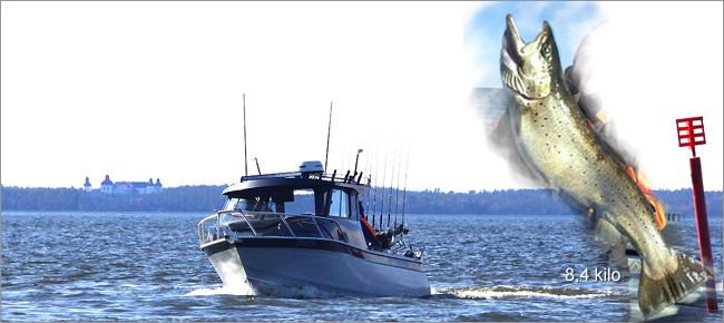 Petter Larsson fiskeguide McLay salmonseeker gullpångsöring mars 2017