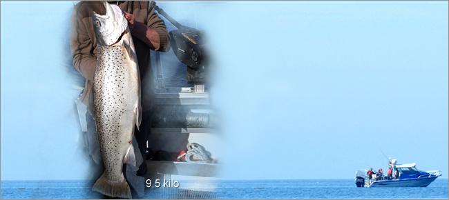 Tommy Nerstrand fiskeguide dalsland fishing McLay gullpångsöring maj 2017