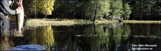 06 Berget Sportfiske lax gullspångslax flugfiske outdoor.se björn blomqvist