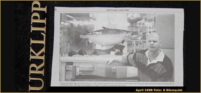 20 years ago World-record-landlocked-atlantic-salmon-taxiderby