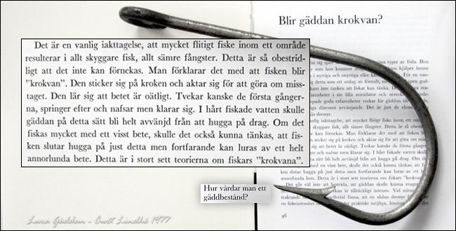 krokvan-gädda-gäddbestånd-lura-gäddan-curt-lindhè-1977-raben-sjögren