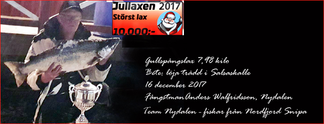team nydalen vinnare jullaxen 2017 anders walfridsson gullspångslax laxfiske trolling vättern outdoor