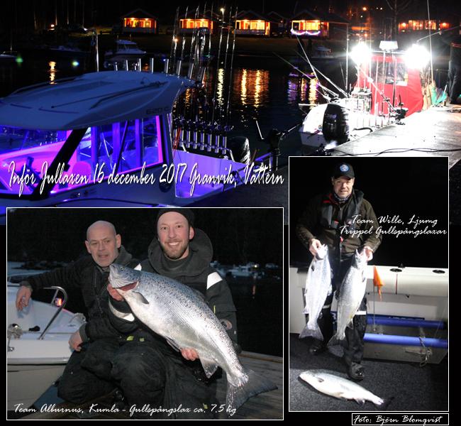 träningsfiske jullaxen 2017 vättern granvik gullspångslax