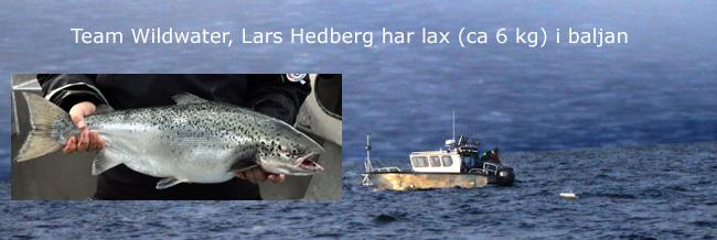 wildwater hedberg laxcup vättern 2017 6 kilo