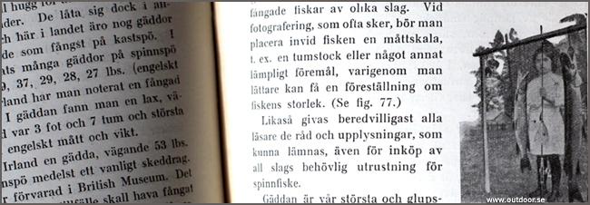 Handledning i Spinnfiske 1924 samla fiskeböcker drag vobbler spinnare
