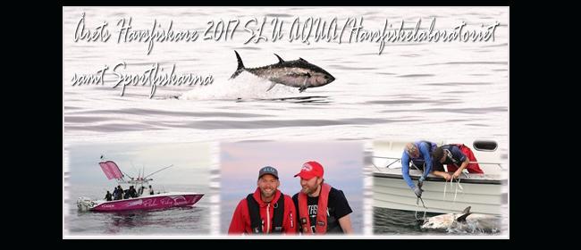 årets havsfiskare 2017