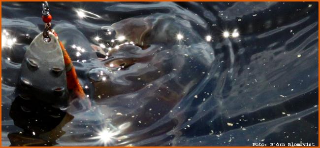 storgädda spinnare sonette 18 gram silversked haspelfiske