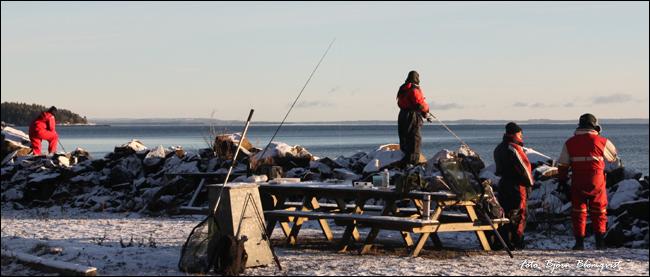 kustfiske vättern gullspångslax klarälvslax gladsax vicke tobis outdoor.se björn blomqvist