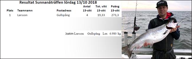 Z bait team larsson gullspång sunnanåträffen 2018