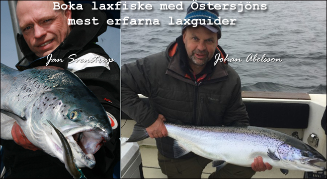 johan abelsson jan svenstrup fiskeguide östersjön laxfiske