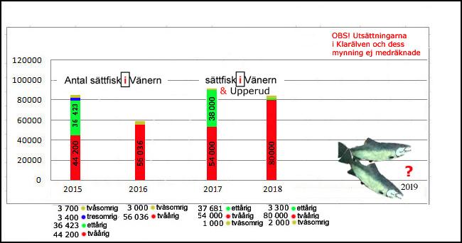 totalen 2018 80-000-tvååriga-smolt-2000 stvåsomrig och-3300-ettåriga-i-vänern-2018-gullspångslax-gullspångsöring