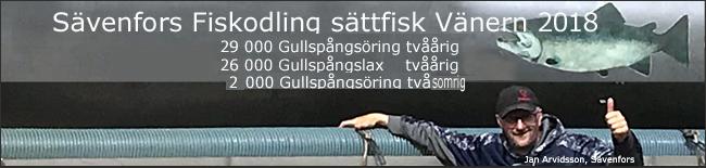 totalen smolt-vänern-Sävenfors-fiskodling-2018-gullspångslax-gullspångsöring
